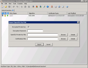 cert11-300x230 Exporting a Godaddy wildcard certificate from IIS to Tomcat