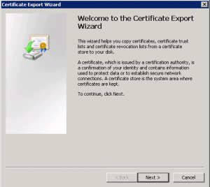 cert3-300x268 Exporting a Godaddy wildcard certificate from IIS to Tomcat