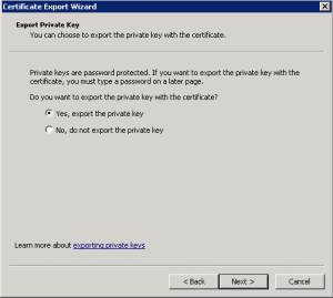 cert4-300x269 Exporting a Godaddy wildcard certificate from IIS to Tomcat