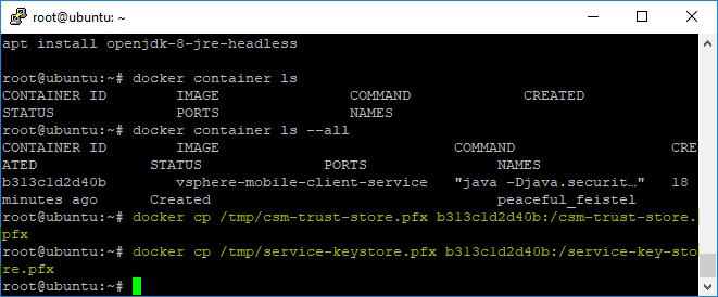 Copying-the-trust-and-service-keystores-to-Docker-for-the-vSphere-Mobile-Client