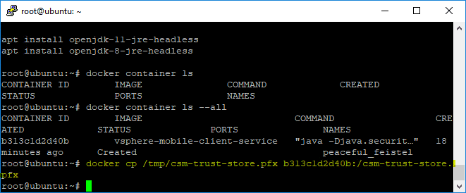 Copying-the-trust-store-to-Docker