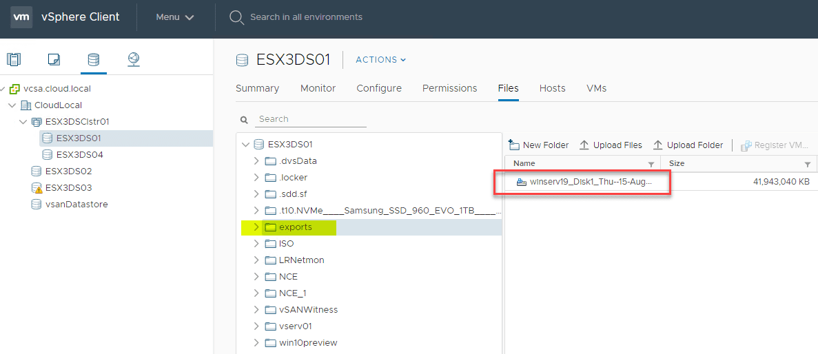 Viewing-the-exported-physical-server-VMDK-on-the-ESXi-host-datastore