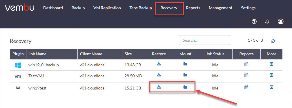 Recovery-options-for-the-physical-server-including-restore-and-mount
