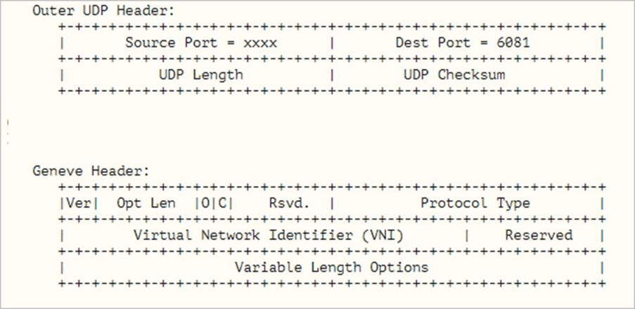 Geneve-network-encapsulation-used-by-NSX-T