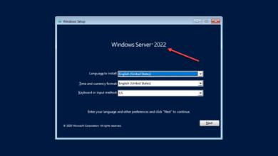 Windows server 2022 showing on the installer splash screen