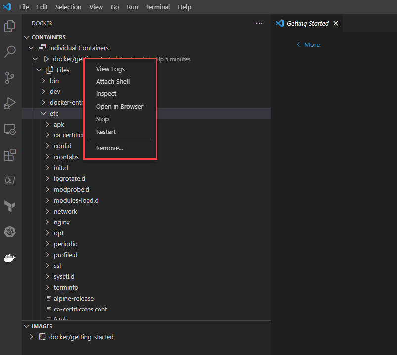 Performing actions on the container using visual studio code