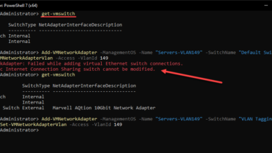 Adding a new VMswitch and network adapter using the Hyper V PowerShell cmdlets