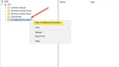 Creating a new conditional forwarder in Microsoft DNS server