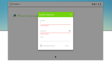 Previewing Agile mode with the automatic launch of VMware Horizon