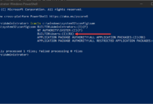Running iCACLS command to check for the SeriousSAM and HiveNightmare vulnerability