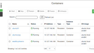 Using LXDUI to view containers on an LXC container host