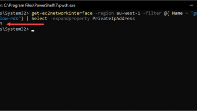 Viewing the RDS internal IP addresses using the get ec2networkinterfaces PowerShell cmdlet