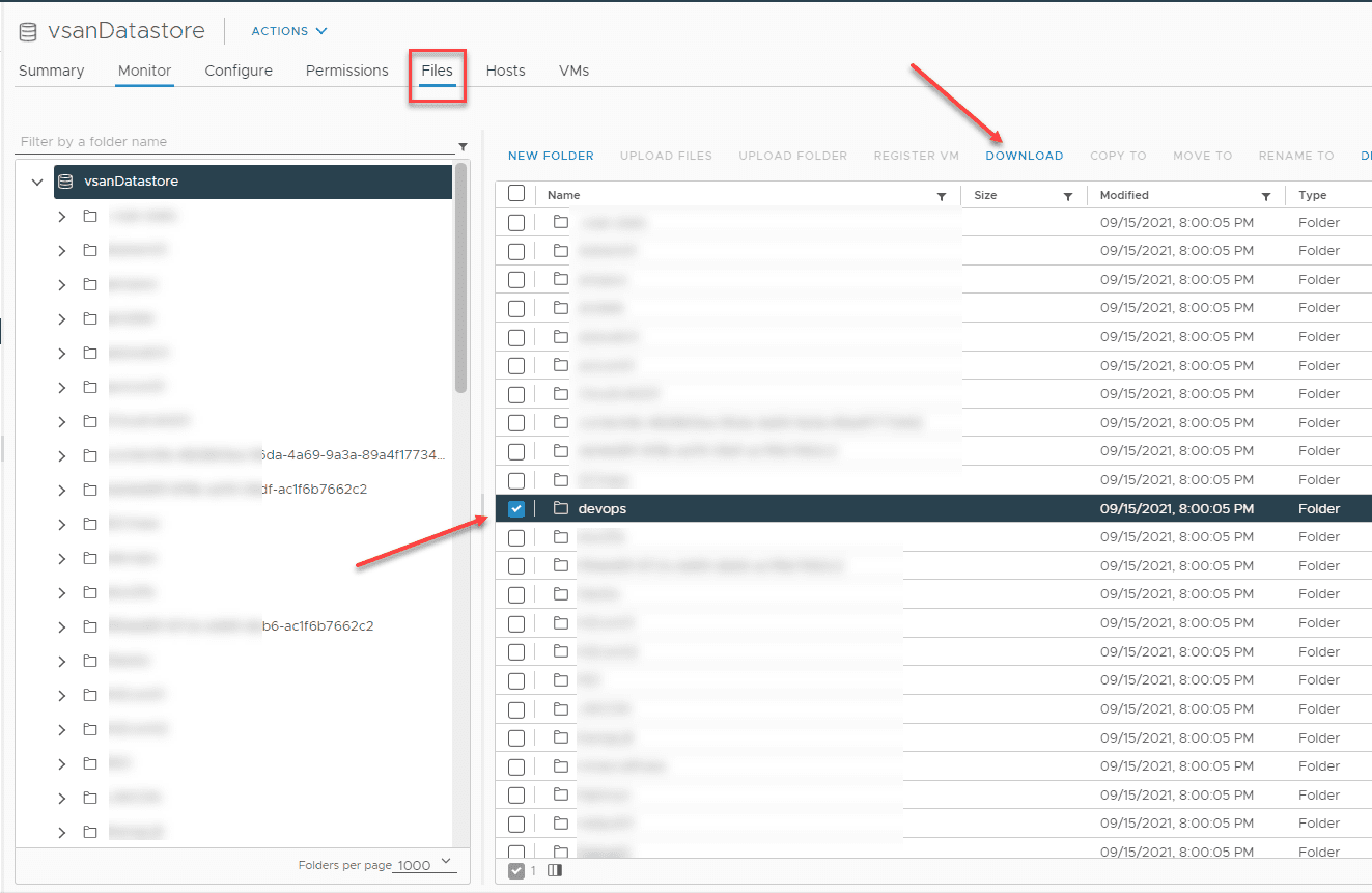 Download the files from the vSphere web client