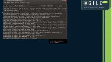 Installing Chrome in the Ubuntu Mate environment of Praim Agile4Linux