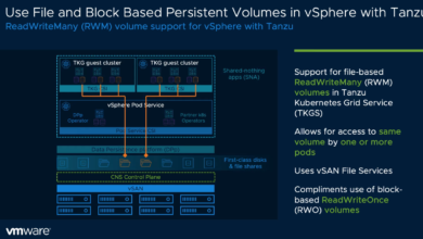 Use file and block based persistent volumes in vSphere with Tanzu